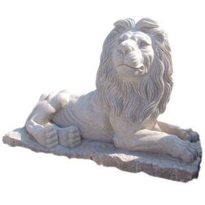 Graniet en de Marmeren Gravure van de Steen