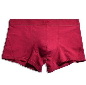 2019 Hommes Boxer Coton Couleur Pure hommes Underwear mémoires
