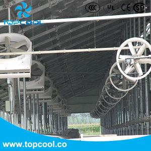 Buitengewone Motor de Ventilator van het Comité van de Recyclage van 50 Duim voor Melkveehouderij