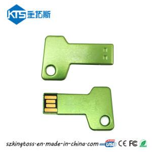 Красочный металлический ключ USB Flash Disk индивидуального логотипа печать