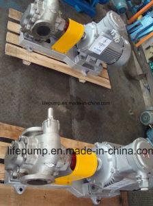 Alta qualità con la pompa a ingranaggi del motore KCB