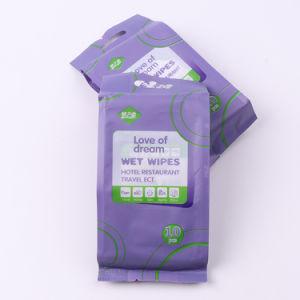 Aangepast Ce & ISO bevestigden het Beschikbare Antibacteriële individueel Verpakte Enige Schoonmaken van de Reis van het Pak afveegt