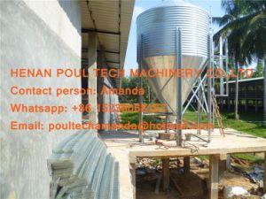 Het Landbouwbedrijf van het Gevogelte van Namibië - de Kooi van de Kip van de Batterij & Hete Gegalvaniseerde Kooi & de Kooi van de Laag met Automatisch het Voeden Systeem