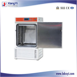 Сплошной двери типа постоянная температура и влажность камера/Инкубатор