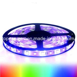 Indicatore luminoso di striscia programmabile di Sk6812 RGBW LED