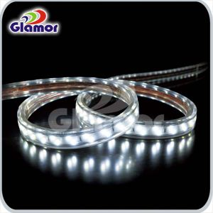 Indicatore luminoso di striscia di Glamor SMD5630 LED 120LEDs