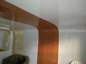 Hot Sale les dalles de plafond panneau de plafond en plastique transparente en PVC