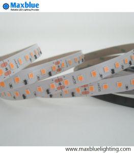 112LEDs striscia costante 2835 della corrente LED del tester 24VDC