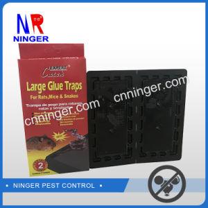 A cola adesiva de interceptação de Cola Forte armadilha para camundongos, ratos e insetos rastejantes Grande