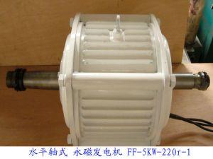 Ffl-5kw/100rpm/DC240V Gerador de Íman Permanente (PMG/PMA/Hidro)