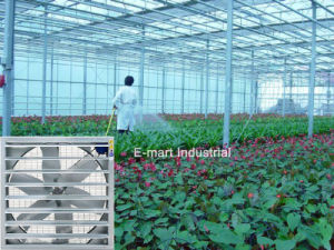 Königlicher abkühlender verwendeter industrieller wasserdichter im FreienAbsaugventilator