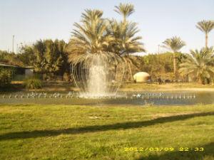 De Pool van de fontein voor de Decoratie van het Huwelijk in Egypte