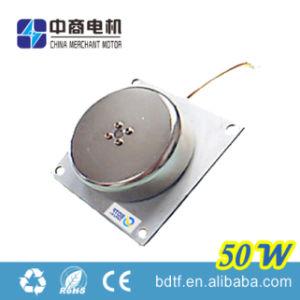 50W CA Motor Wind Generator