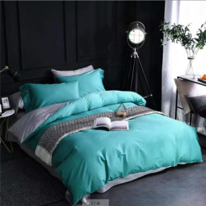 Luxury 100% algodão Hotel Colorido Lençol/Consolador Set/Bedding Set