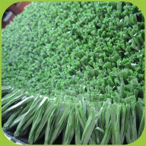 Der bunte Sport, der Spur-Gras laufen lässt, Sports künstliche Gras-Rasen-Teppiche