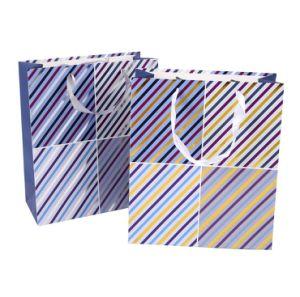 sacco di carta stampato marchio della laminazione su ordinazione della corda di 210g pp