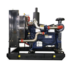 Hersteller 8kw Shandong-Weifang zu den 300kw LPG Gasturbine-Generatoren