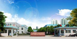 ISO9001 Diesel aprovado a bomba de água com alta qualidade (JT-80CBZ22-4.0B)