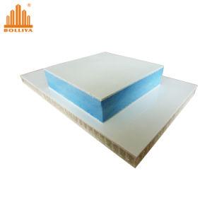 Panneau sandwich EPS / panneau isolé structurels pour la maison préfabriquée