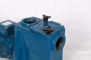 プールのための電動機の水ポンプ