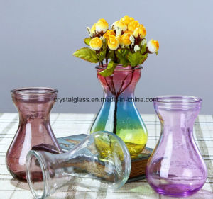 Vase en verre coloré Hot Sale
