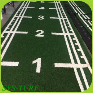 Aritificial Rasen für Gymnastik Sprots Bereich-Innenim Freien