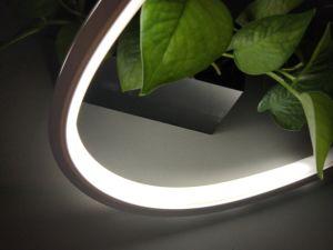 超薄い24Vシリコーンの放出20*14mm小型LEDのネオン屈曲の管ライト