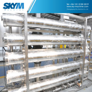 La norma ISO Ce aprobada el llenado de purificación de filtración de agua el equipo de tratamiento de la máquina
