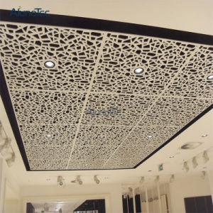 Venda por grosso de tamanho grande uso do painel de tecto perfurado para Edifício Residencial
