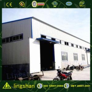 Edificios ligeros de la estructura de acero (L-S-031)