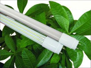 "48"" T8 Lâmpada fluorescente (T8-18W)"