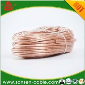 12 калибра 100 ногами АС 2 проводниковый кабель домашней аудиосистемы автомобиля