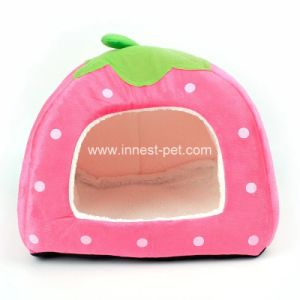 Camere dell'interno del gatto del cane della base dell'animale domestico della fragola nei formati differenti