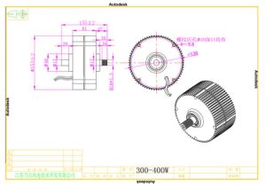 Generatore a magnete permanente basso di prezzi 300W 12V/24V da vendere