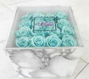 단 하나 로즈를 위한 중국 디자인 공급 아크릴 꽃 포장 상자