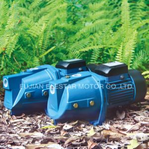 Qualidade italiana Comandada Pump-Jsw Água/JSP Series