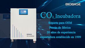 Control inteligente Biobase 160L Lab el tejido y el cultivo bacteriano el dióxido de carbono Incubadora de CO2 para uso médico