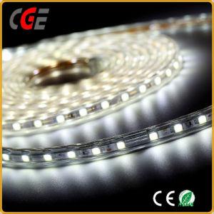 Il Ce di DC12V/24V ha approvato il prezzo basso del LED di striscia dell'indicatore luminoso LED della lampada flessibile della striscia