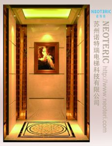 Cabine de vidro personalizadas para o elevador de serviço NTR0597 do passageiro