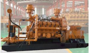tipo biogas della pianta del biogas del concime animale 10kw-700kw del generatore