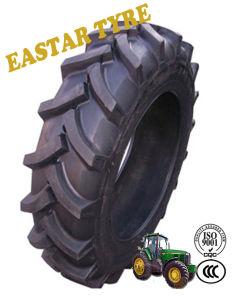 농업 타이어 트랙터 타이어 농장 타이어 Agr 타이어 (16.9-28)