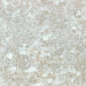 De marmeren Tegel van de Vloer in Fabriek Foshan op Bevordering