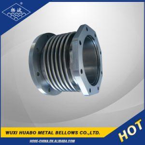 Flexibles Metallgewölbtes Gefäß Yang-BO für Übertragung System