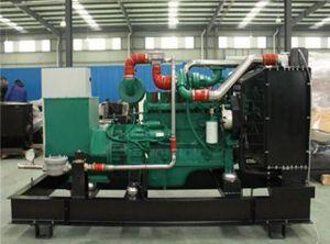 250kVA는 유형 가스 발전기 세트를 연다