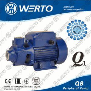 Home Use Electric Vortex 0.5HP periférico da bomba de água