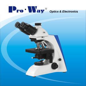 Исследование привело Seidentopf Trinocular биологического микроскопа и доступное обновление (PW-BK6000)
