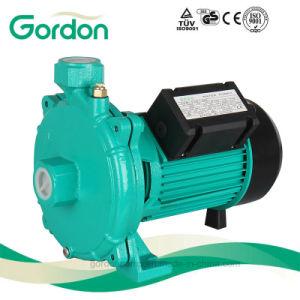 Pompa centrifuga autoadescante elettrica nazionale del collegare di rame con i pezzi di ricambio