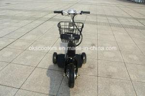 500Wリチウム電池の電気三輪車3の車輪の電気貨物Trike