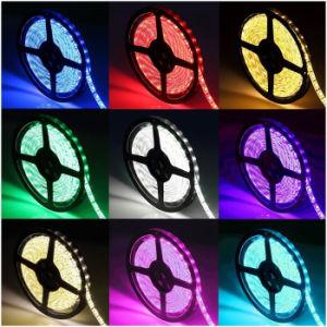 indicatore luminoso di striscia Non-Impermeabile di RGB LED della striscia 5050 di 5m SMD LED RGB 300 LED con kit della striscia IR di RGB chiave LED del periferico e dell'adattatore di 44