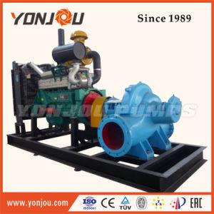 Bomba de Água Acionada por Motor Diesel